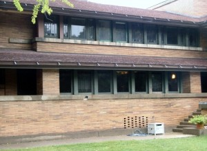Darwin D. Martin Residence 4